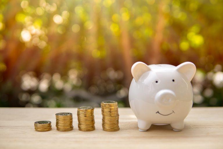 Piggy Bank And Money Coin